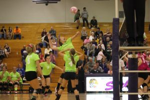 Volleyball Pink and Green Game
