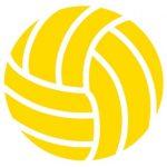 Varsity Volleyball vs. Carroll