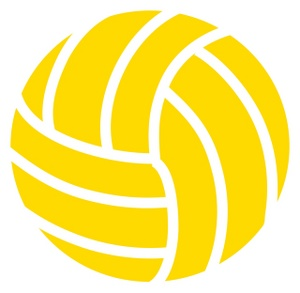 Volleyball Sectional Information