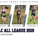 Cross Country 2019 All League Performers