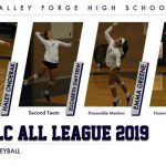 Volleyball 2019 All League Performers