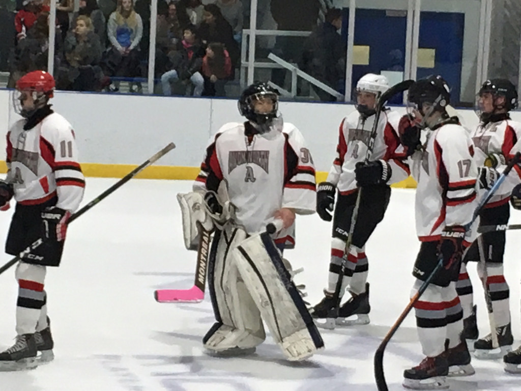 Ambridge/Avonworth High school hockey Stays on a roll, with 9-0 win over Carrick