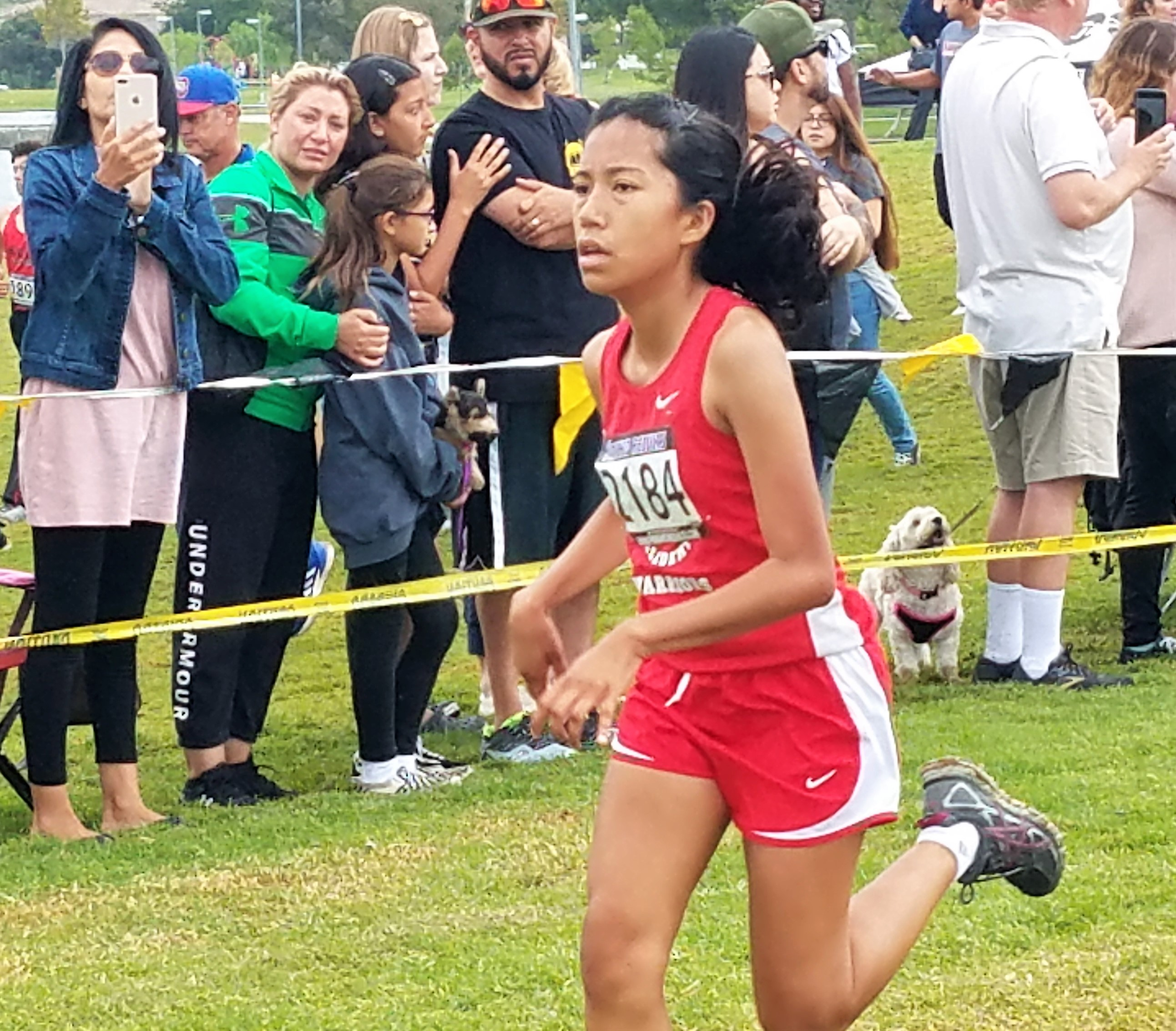 Cross Country Opens 2018 Season at The Great Cow Run