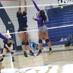 Girls Varsity Volleyball falls to Charles Henderson High School (Troy, AL) 3 – 1