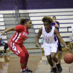 Girls Junior Varsity Basketball falls to DA Smith 31 – 20