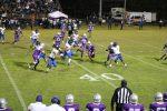 Bulldogs fall to Montgomery Catholic