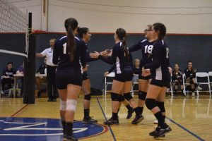 Volleyball 2014-2015