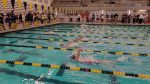 Grand Blanc Girls Swimming and Diving finishes 16th place at MHSAA D1 Final; Sophie Curtis earns All-State