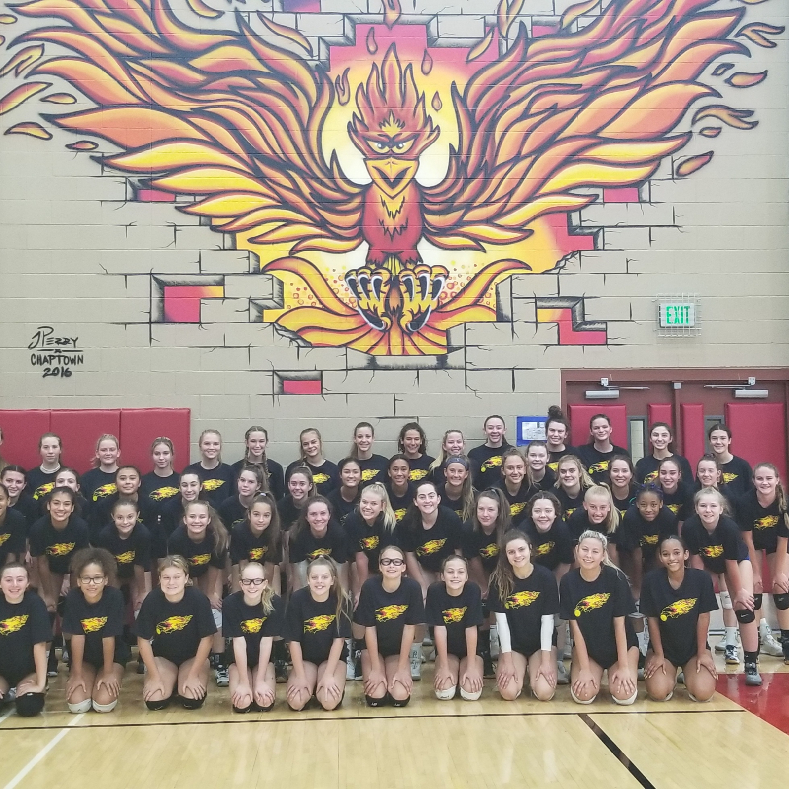 Chaparral Volleyball 2020 Updates