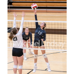 Middle School Volleyball Tryouts Postponed