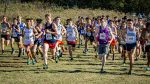 2020 High school cross country preview