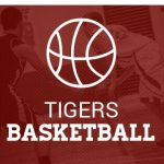 2017 Boys Future Tigers Registration