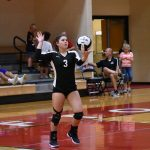 Varsity Volleyball vs Fort Wayne Falcons