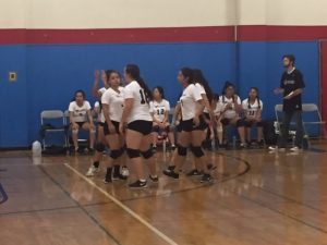 Volleyball vs. Liberty Baptist