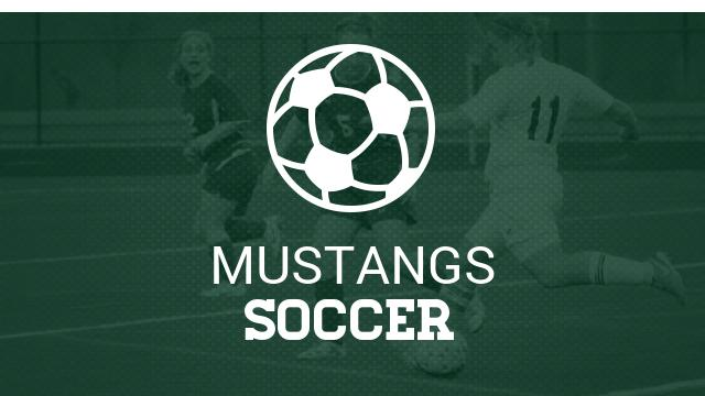 Homestead girls soccer team falls in CCS playoffs