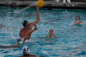 Boys Varsity Water Polo vs Los Gatos