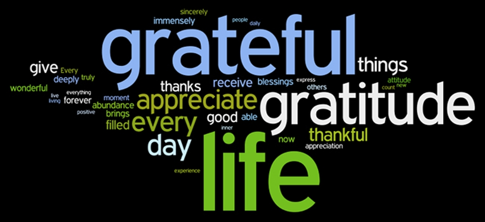 The 21 Day Gratitude Challenge