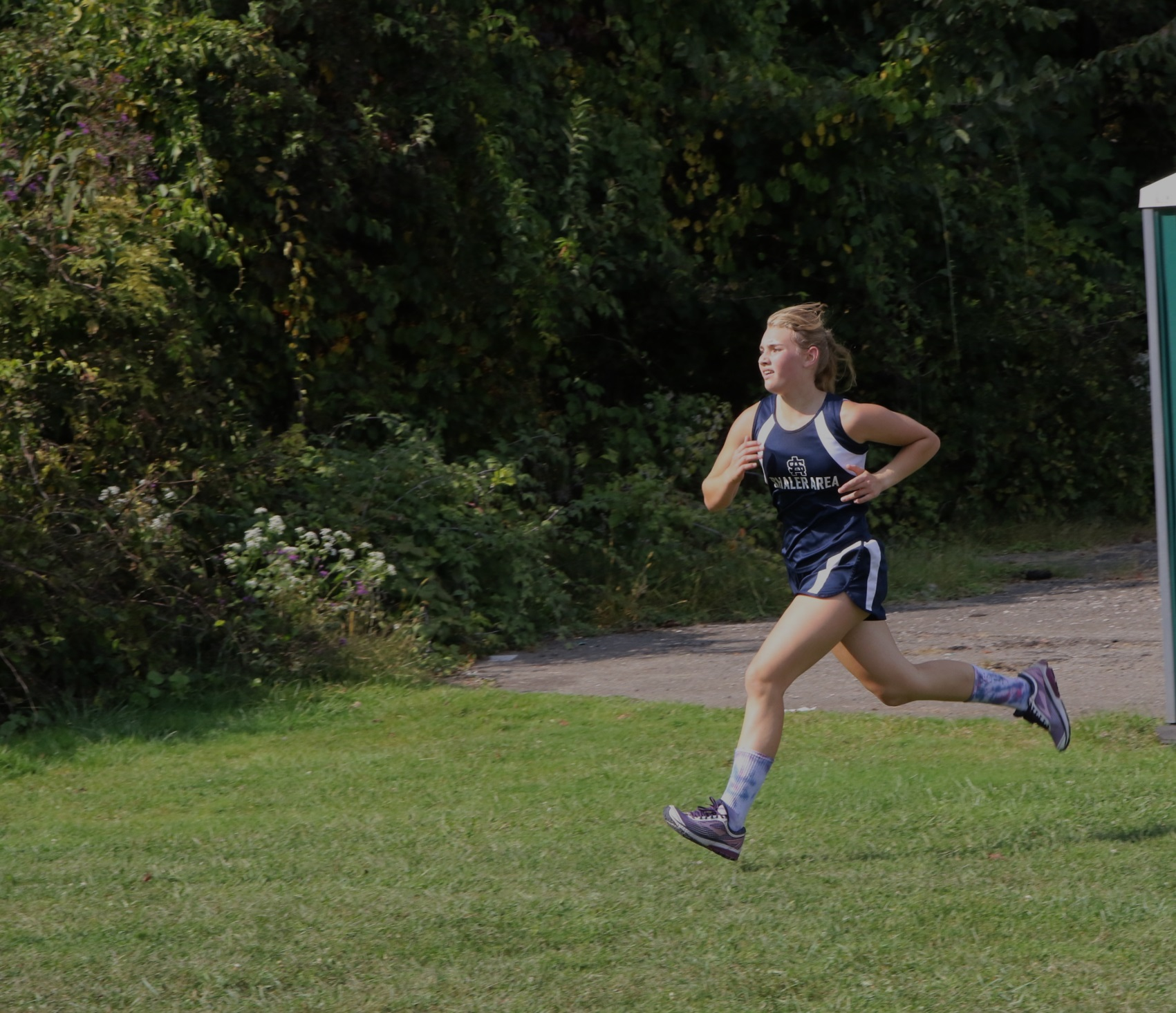 Shaler runners look to improve on cross country courses