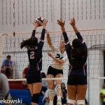 Shaler Area girls volleyball finding stride, clinches playoff spot