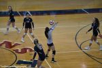 Improved offense adds new dimension to Shaler Area volleyball