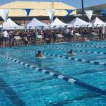 AP Girls Swim Team Qulifies at State