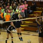 Volleyball Comes Up Short In District Final