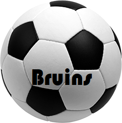 Girls & Boys Soccer to Sell Bruin Masks