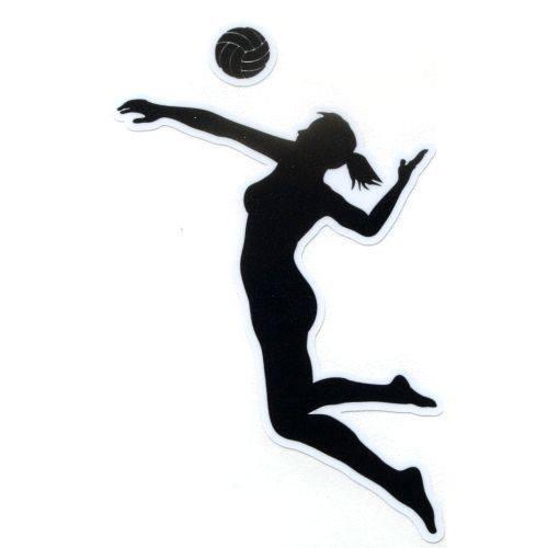 Girls Varsity Volleyball beats Montour 3 – 1