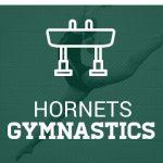 Roswell Gymnastics Practice