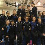 Girls Varsity GymnasticsNorthville
