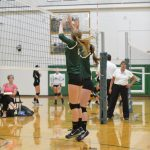 Volleyball Falls To Swan Valley