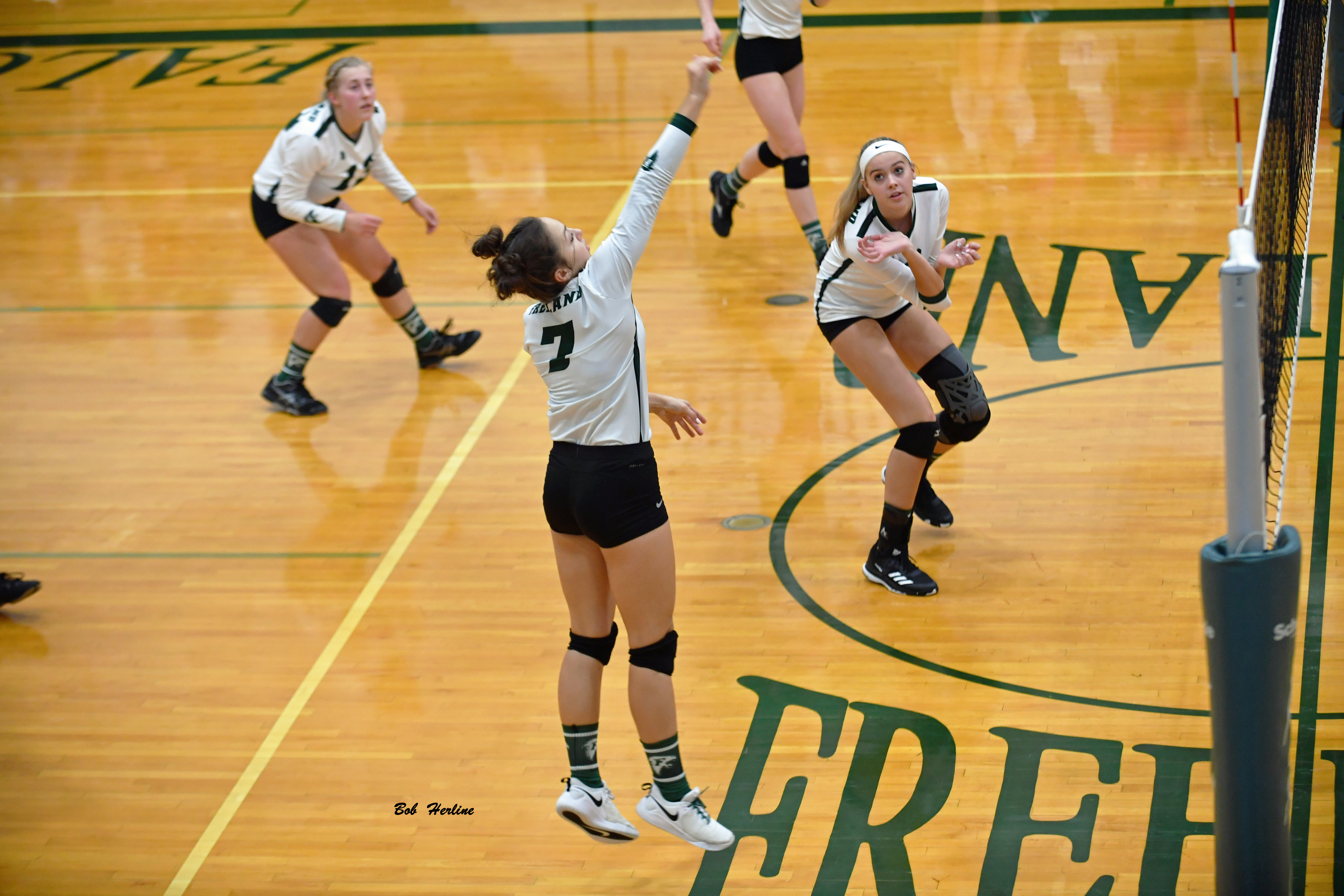 Volleyball Clinches a Share of the TVC Central Title