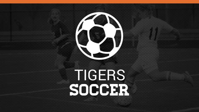 Erie High School Soccer Summer Information