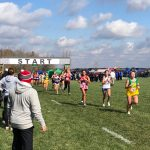 Three Compete at XC State Finals, Light earns All State