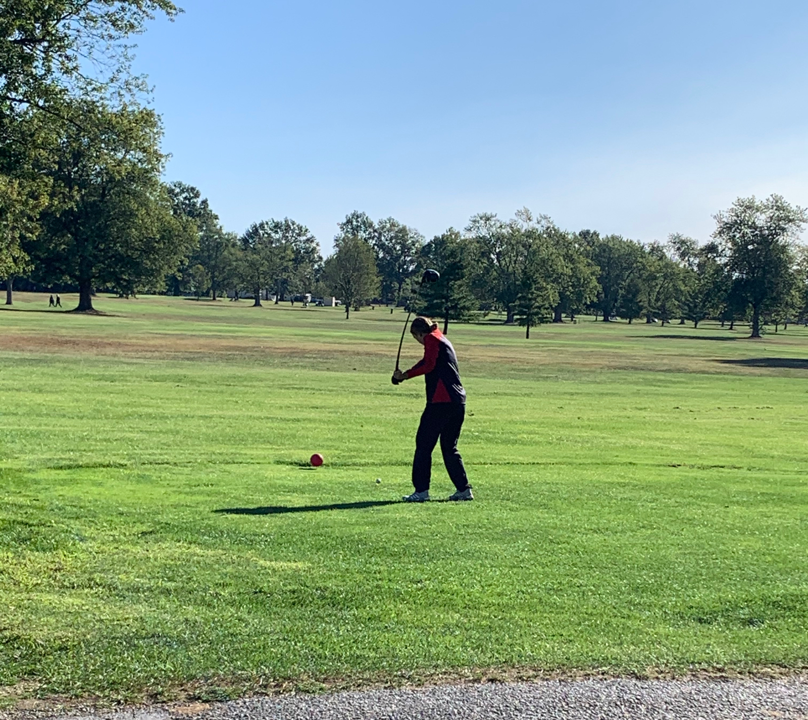 Girls Golf Wins Another Sectional Title