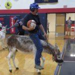 Donkey Basketball 2016