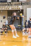 Volleyball defeats Lawrence Central