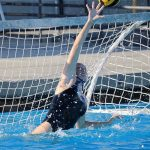 Varsity Water Polo Reaches Semi Finals