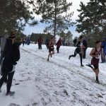 Cross Country ends season at section meet