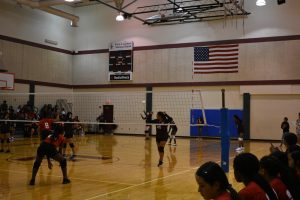 Jr High Lady Lion Volleyball vs Del Valle 9/12/19