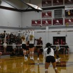 Lady Lion Volleyball vs Dripping Springs