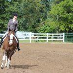 Big Weekend for Equestrian Team!