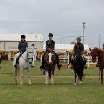 Equestrian Team's First District Meet
