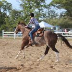 Equestrian Team Places 4th at Regionals