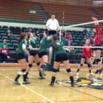 Volleyball Scorch Devils