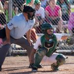 Lady Vikings Advance to Softball District Championship
