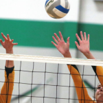 Volleyball: Eagles fall to Hill-Murray in section semifinals (Woodbury Bulletin)