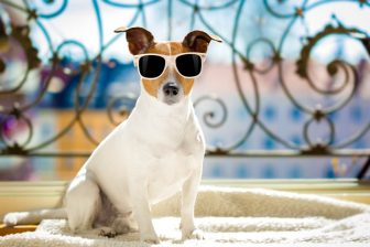 Stay-Cool-In-The-Summer