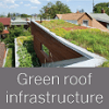 Green roof infrastructure