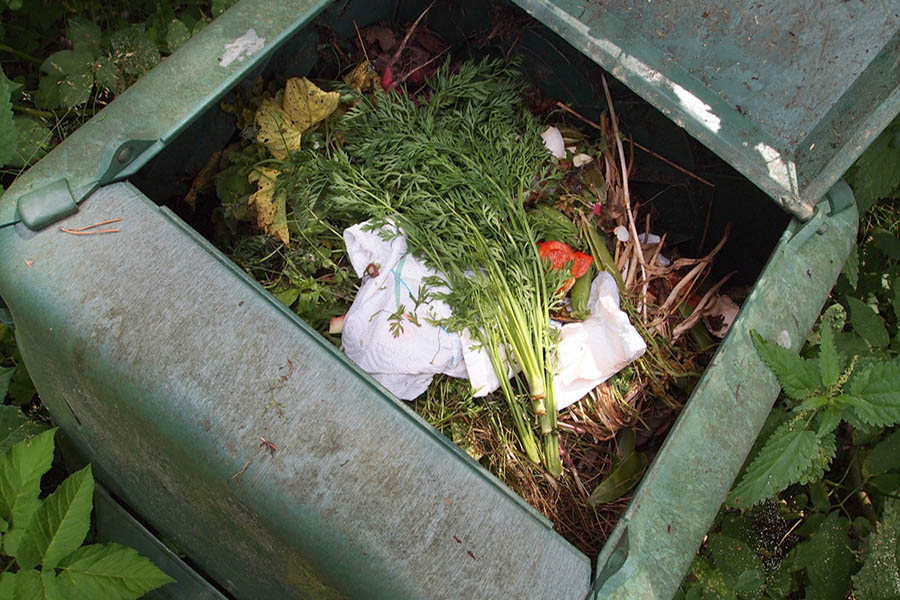 Cold-or-Hot-Composting